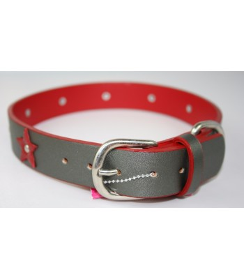 "Red Stars in Silver Leather Extra-Large Collar 1 1/4""x26"""